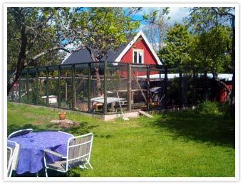 Stora rastgården, Foto: Katthemmet Kompis